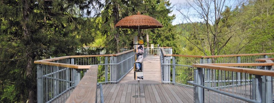 Tree Top Path - Bad Harzburg